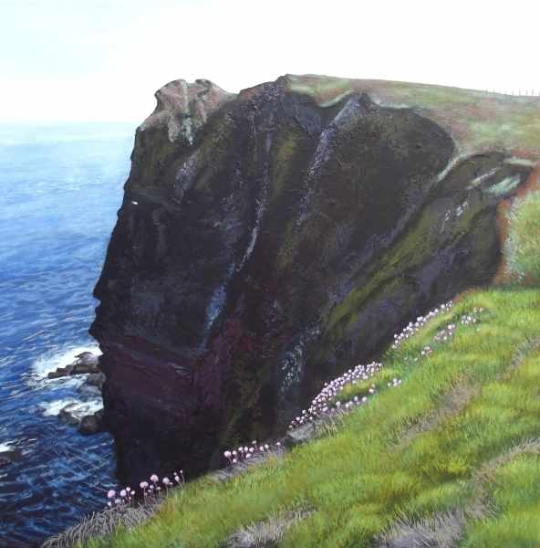 Cliff Face (Duncansby)
