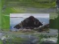 Skomer Island 1